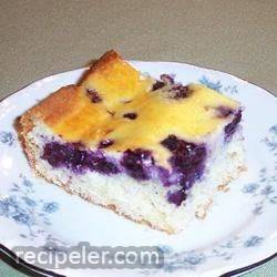blueberry bars
