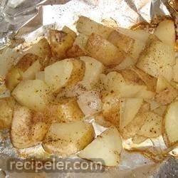 Campfire Foil Onion