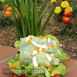 Chicken Caesar Spring Rolls