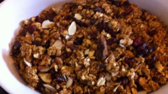 crunchy granola breakfast cereal