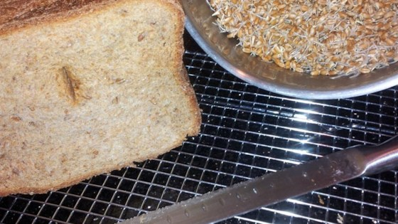 essene bread for the bread machine