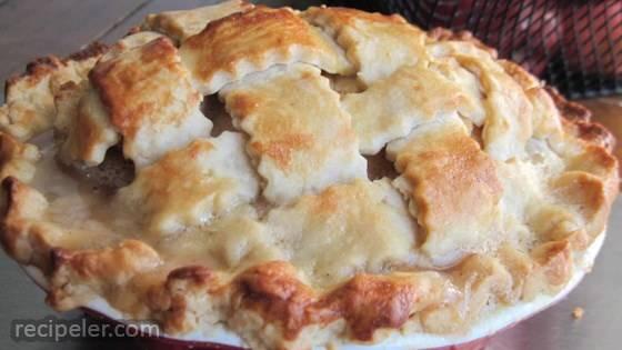 Flaky Food Processor Pie Crust