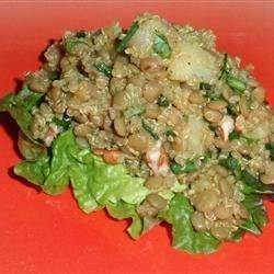 fruity curried lentil salad