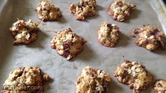 German Oatmeal Date Cookies