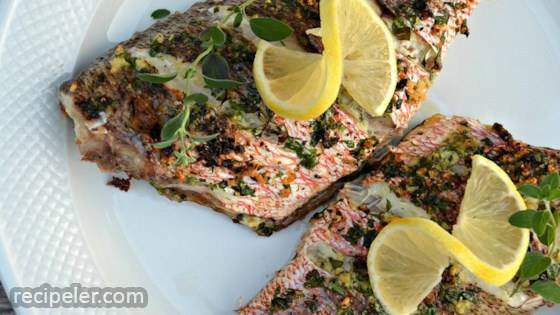 Mediterranean Red Snapper