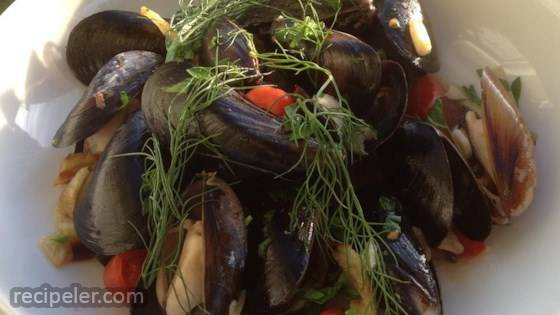 Mussels in a Fennel and White Wine Broth