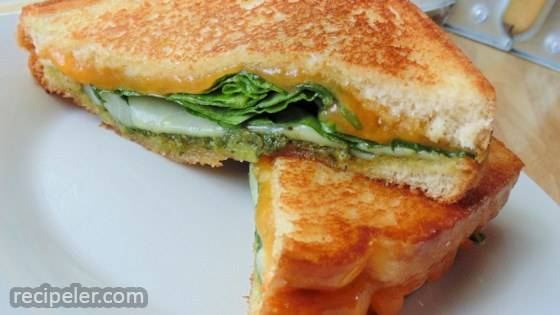 Pleasing Gourmet Grilled Pesto Cheese Sandwiches