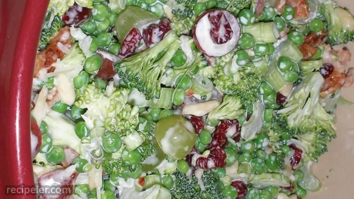 raw veggie picnic salad