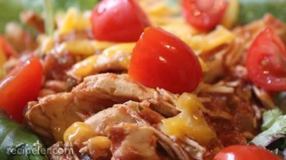 Slow Cooker Spicy Chicken