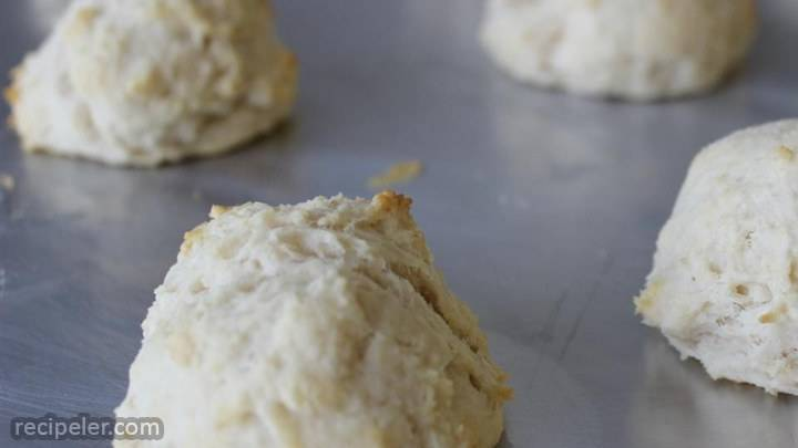 south georgia biscuits