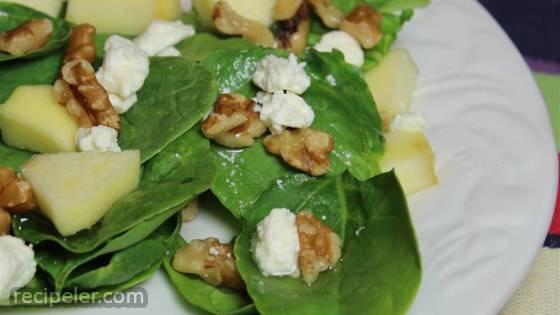 Spinach and Goat Cheese Salad