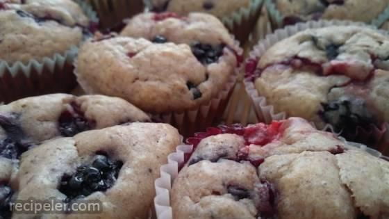 Wild Blackberry Muffins
