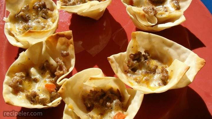 won ton wrapper appetizers