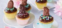 ghirardelli chocolate frosted cupcakes