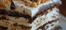 Hot Fudge ce Cream Bar Dessert