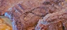Korean Barbequed Beef