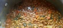 persian lentil stew