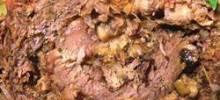sicilian brasciole a la lena