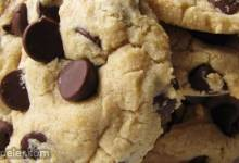 Absolutely the Best Chocolate Chip Cookies