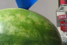 adult watermelon for bbq's