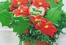 dora's christmas cookies