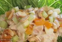 Gingery-Apricot Turkey Salad