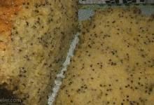 moist lemon poppy seed cake